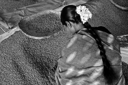 """PERFUME DE UN SUEÑO: VIAJE EN EL MUNDO DEL CAFÉ"""" con 75 fotografía realizadas por Sebastião Salgado"""